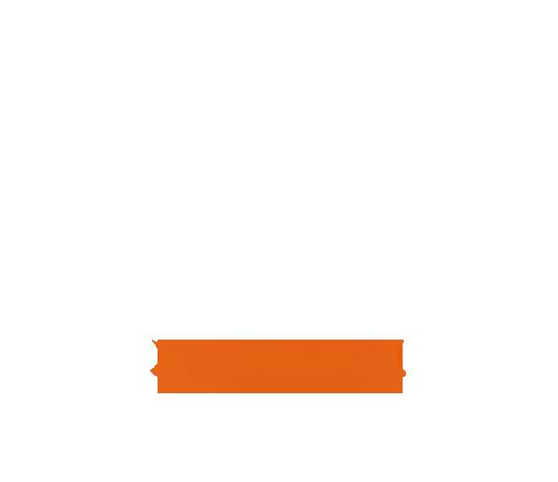 Orange Bottom Stripe